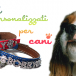 Collari per cani: W il made in Italy