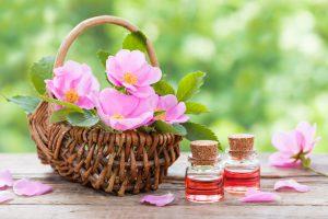Le proprietà dell'olio di rosa mosqueta